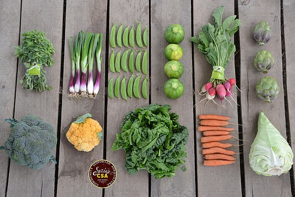Produce from a recent Community Supported Agriculture box from Suzie's Farm, ...