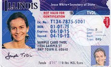"Illinois began offering ""temporary visitor driver's licenses"" to undocumented (non-visa status) immigrants in December 2013."