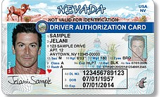Nevada began offering Driver Authorization Cards for undocumented immigrants in January 2014. The cards are valid for one year and can be renewed.