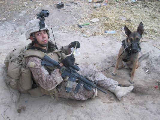 Marine Corps Staff Sgt. Christopher Diaz with military working dog Dino in Af...