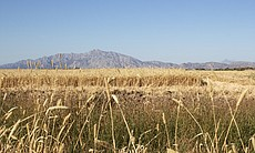 The Mexicali Valley, one of northwest Mexico's most important farming regions...