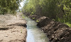 Water flowing through a habitat restoration sit...