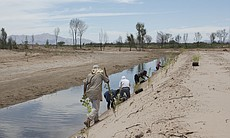 Employees of the Sonoran Institute, an Arizona-based conservation group, plan...