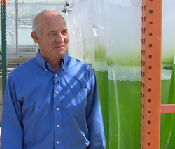 Algae researcher Stephen Mayfield stands next to bags of bubbling algae-infus...