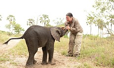A young elephant and Dr. Joy Reidenberg.
