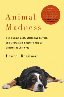 """Laurel Braitman, is author of """"Animal Madness: How Anxious Dogs, Compulsive Parrots, and Elephants in Recovery Help Us Understand Ourselves."""""""
