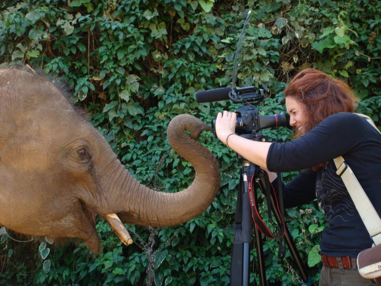 Author Laurel Braitman points her camera at a baby elephant.