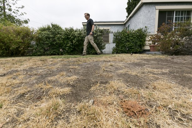 Michael Korte walks on the brown lawn of his Glendora, California home, July 17, 2014.