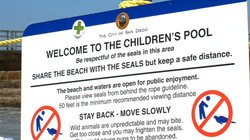 A sign designates the current regulations at Children's Pool in La Jolla on August 15, 2014.
