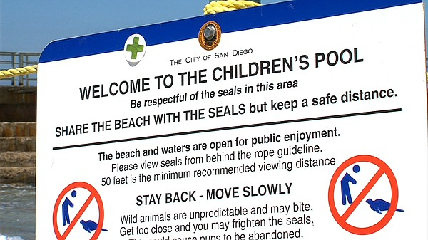 A sign designates the current regulations at Children's Pool in La Jolla on A...