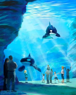 Artist rendering of the underwater view for the planned expansion of SeaWorld...