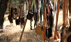 Leather and fur goods for sale at the Laguna Mountain Rendezvous 20 miles north of Julian on October 24, 2014.