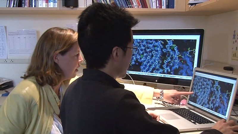 Researchers at The Scripps Research Institute study the Ebola virus and drug ...