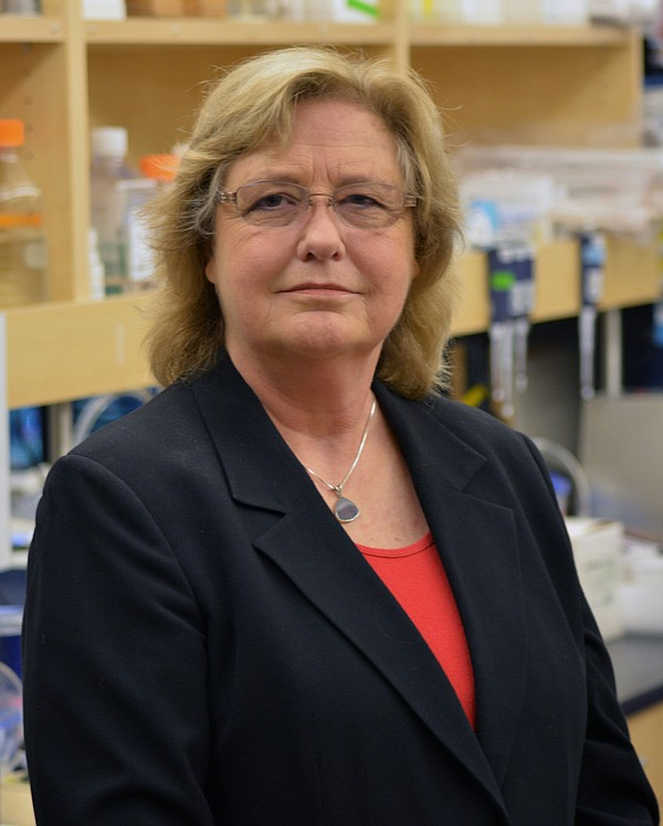 Jeanne Loring pictured in her lab at The Scripps Research...