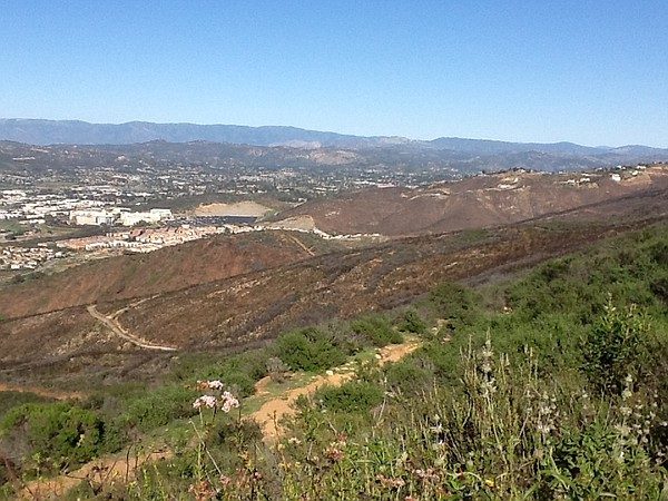 The hills above San Marcos, showing the trails on the are...
