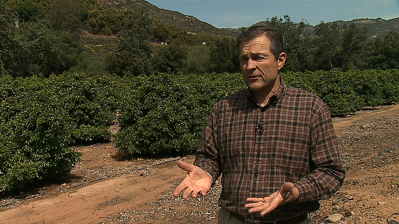 Some San Diego Farmers Shut Off Water In Prolonged Drought Kpbs
