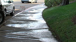 Water runs down a sidewalk on Adrian Street in Point Loma after the grass was...