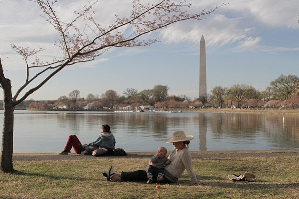 People enjoying the Tidal Basin on the National Mall.