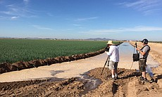 The farms in Blythe, California are flood irrig...