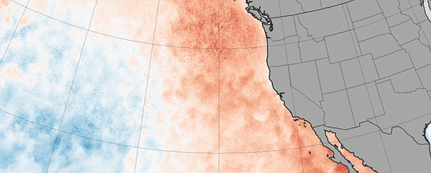 Sea surface temperature anomaly, March 2015.