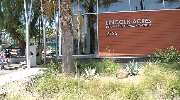 Free Summer Lunches For Kids At San Diego County Libraries