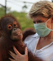 Clare Balding meets young orphaned orangutans in Borneo where one blind orangutan is about to have microsurgery to help her see again.