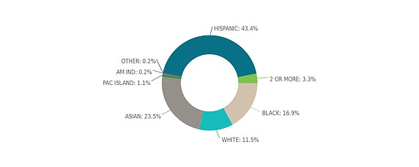 The racial breakdown of San Diego City Council District 4...