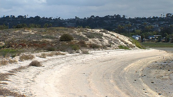 A sandy berm that keeps Mission Bay from flooding the Ken...