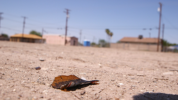 Broken glass litters an empty lot in East El Centro on Au...