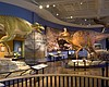 The NAT Showcasing Fossils Unearthed At San Diego Constru...