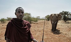 Richard and elephant at Kilimanjaro, Tanzania. (65713)