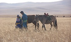 Boys with horse on the steppe, Mongolia. (65721)