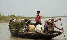 Honey hunters in boat, Sundarbans, Bangladesh. (65724)