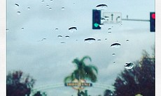 Raindrops collect on a car windshield in Chula Vista, Jan. 7, 2016.