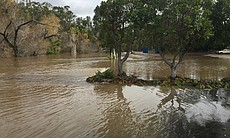 The San Diego River spills into the parking lot of the Town and Country Resor...