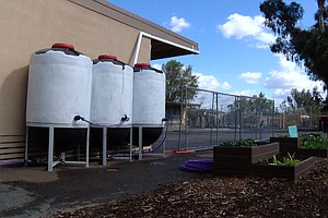 San Diego Unified Piloting Rainwater Collection System