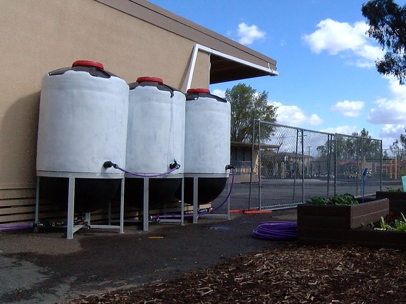 Three barrels each capable of holding 300 gallons make up the new rainwater c...