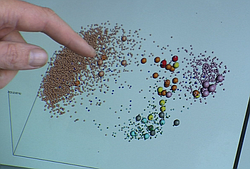 Rob Knight points out how microbial samples from a handful of fermentation fa...