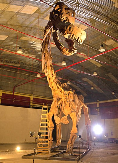 A new giant titanosaur find - a whole reconstructed skele...