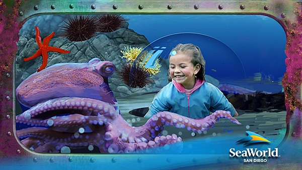 An undated rendering shows a child viewing an octopus from a bump-out in an a...