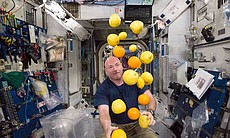 Scott Kelly juggles fruit aboard the ISS. (72599)