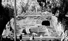 Guests look at the new polar bear grotto exhibi...