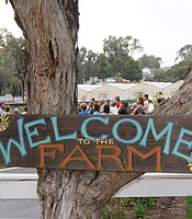Coastal Roots Farm welcome sign
