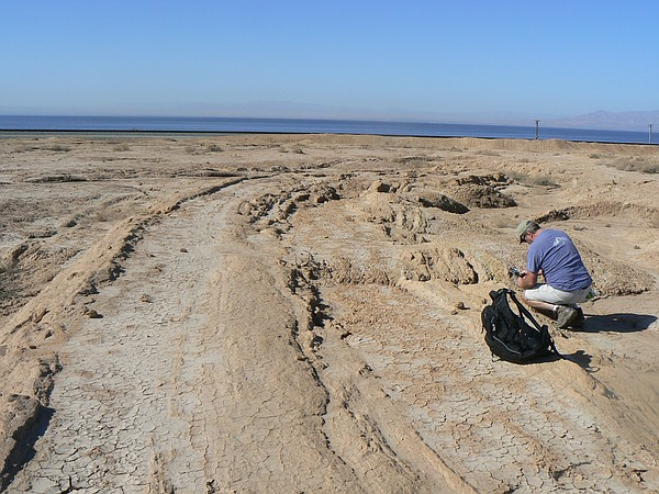 Neal Driscoll takes measurements of onshore sediment layers along the eastern...