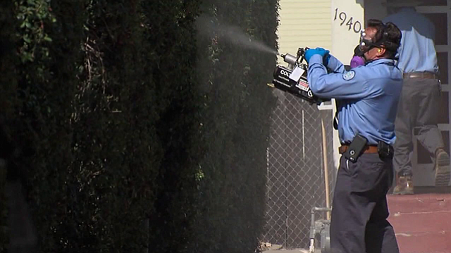 San Diego County Vector Control workers spray pesticide in an effort to kill ...