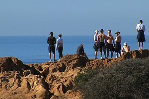 Protecting Torrey Pines Popular But Fragile Ecosystem
