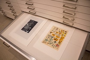 San Diego Museum Of Art Brings Little-Known Masterpieces ...