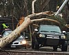President Trump Approves Federal Relief For San Diego's Storm Damages