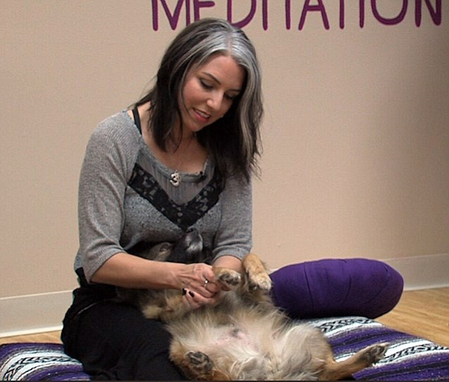 Amanda Ringnalda gives her dog Pepper a massage during a Wellbeing for Dogs +...