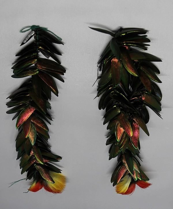 Peruvian insect dance earrings, made of beetle shells and...